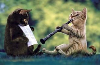 Cat-Plying-Clarinet-Funny-Musicians-Picture